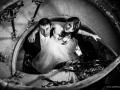 sesje ślubne opole (26)